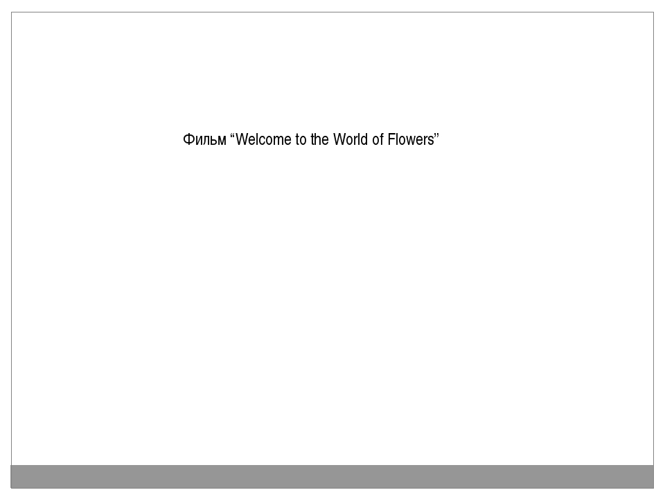 "Фильм ""Welcome to the World of Flowers"""