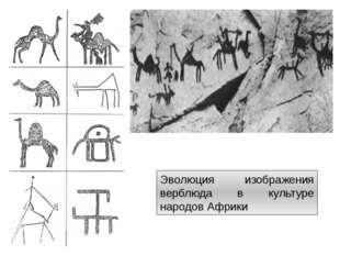 Эволюция изображения верблюда в культуре народов Африки http://artyx.ru/books