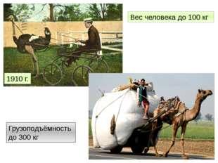 1910 г. Вес человека до 100 кг Грузоподъёмность до 300 кг http://www.fresher.