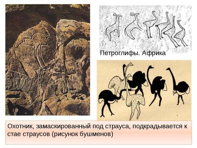 Охотник, замаскированный под страуса, подкрадывается к стае страусов (рисунок...