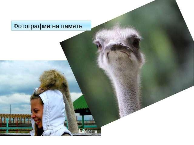 Фотографии на память http://kaifolog.ru/uploads/posts/2012-11/thumbs/13528842...