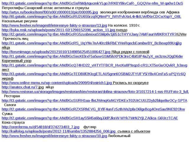 http://t3.gstatic.com/images?q=tbn:ANd9GcSsRMdytqucmkYLgo7rRK0Y8kvCaR-_GQQVw-...