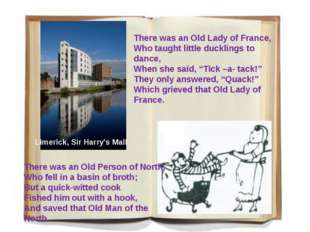 There was an Old Lady of France, Who taught little ducklings to dance, When