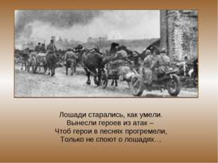 Лошади старались, как умели. Вынесли героев из атак – Чтоб герои в песнях про