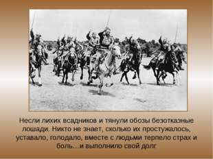 Несли лихих всадников и тянули обозы безотказные лошади. Никто не знает, скол