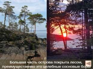 Кий-остров Небольшой остров расположен в Онежской губе Белого моря, в 15 км о