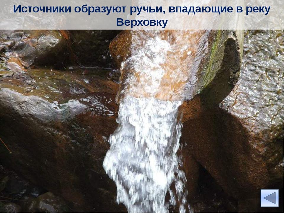 Куртяевкий минеральный источник Миллионы лет назад в районе урочища Куртяево...