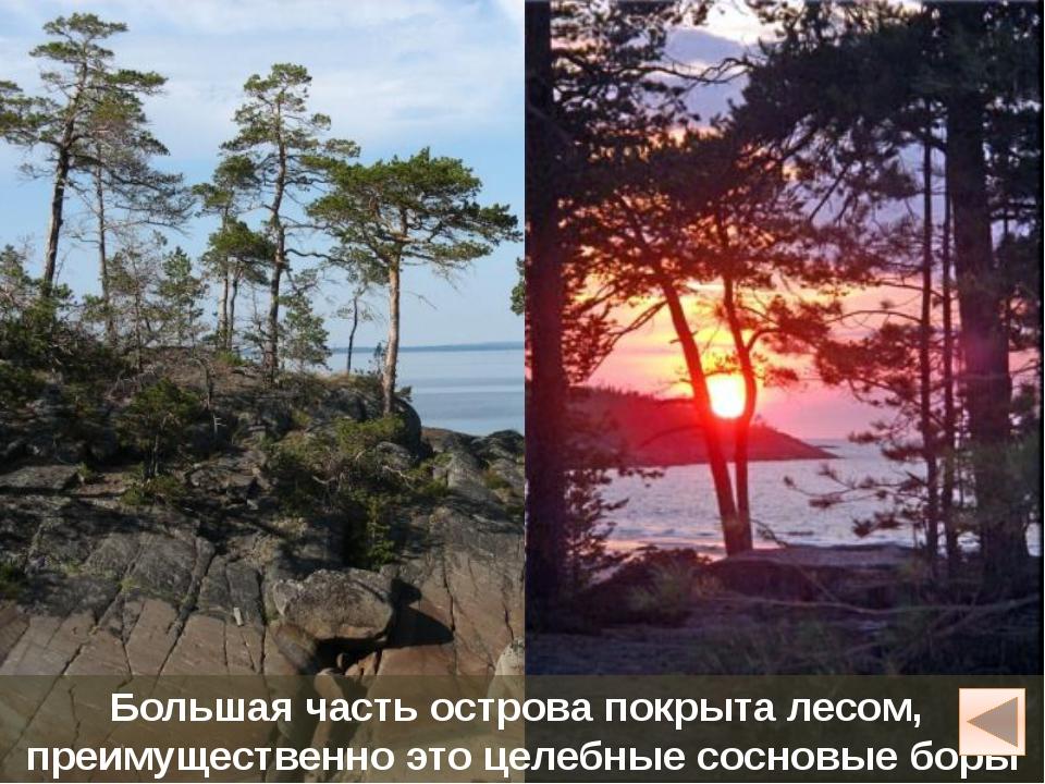Кий-остров Небольшой остров расположен в Онежской губе Белого моря, в 15 км о...