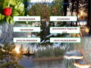 « Замени меня» озеро болото луг широколиственный лес поле