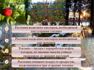 http://сезоны-года.рф/sites/default/files/vremena_goda_dly_detey_01.jpg фото