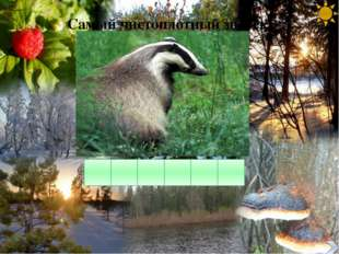 Расшифруйте фразу Береги лес – наше богатство! 2.6.18.6.4.10. 13.6.19. – 15.1