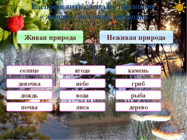 « Санитары» леса 1 Это животное называют « санитаром» леса. Кто это? Волк 2 Э...