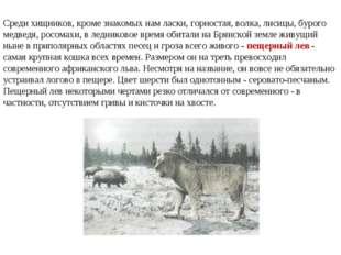 Среди хищников, кроме знакомых нам ласки, горностая, волка, лисицы, бурого ме