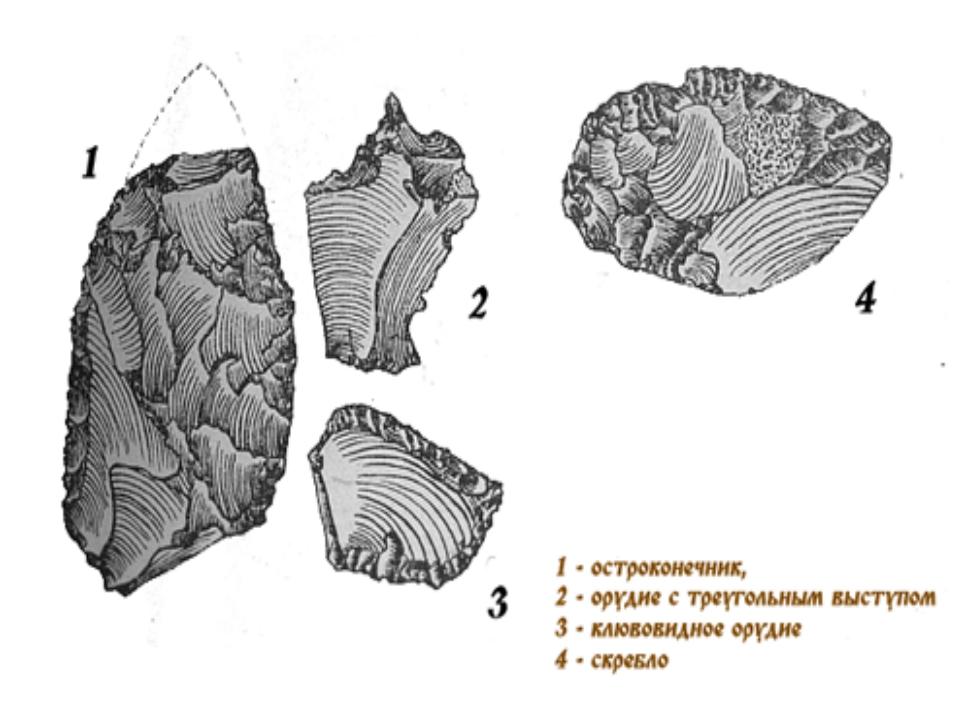 Орудия неандертальцев из Хотылево