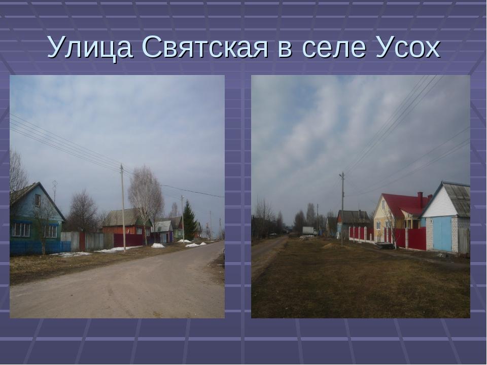 Улица Святская в селе Усох