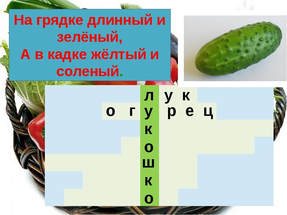 л у к о ш к о у к На грядке длинный и зелёный, А в кадке жёлтый и соленый. о...