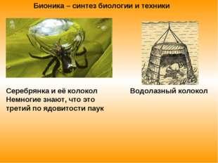 Серебрянка и её колокол Водолазный колокол Немногие знают, что это третий по