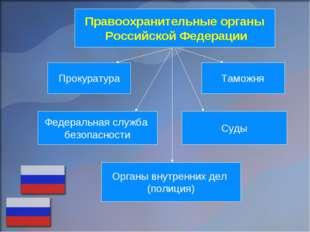 Правоохранительные органы Российской Федерации Прокуратура Таможня Федеральна