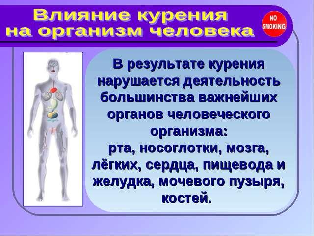 В результате курения нарушается деятельность большинства важнейших органов че...