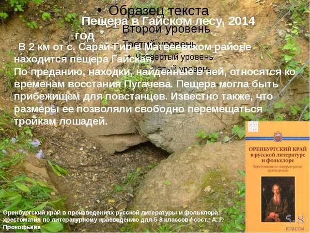Пещера в Гайском лесу, 2014 год  В 2 км от с. Сарай-Гир в Матвеевском район...