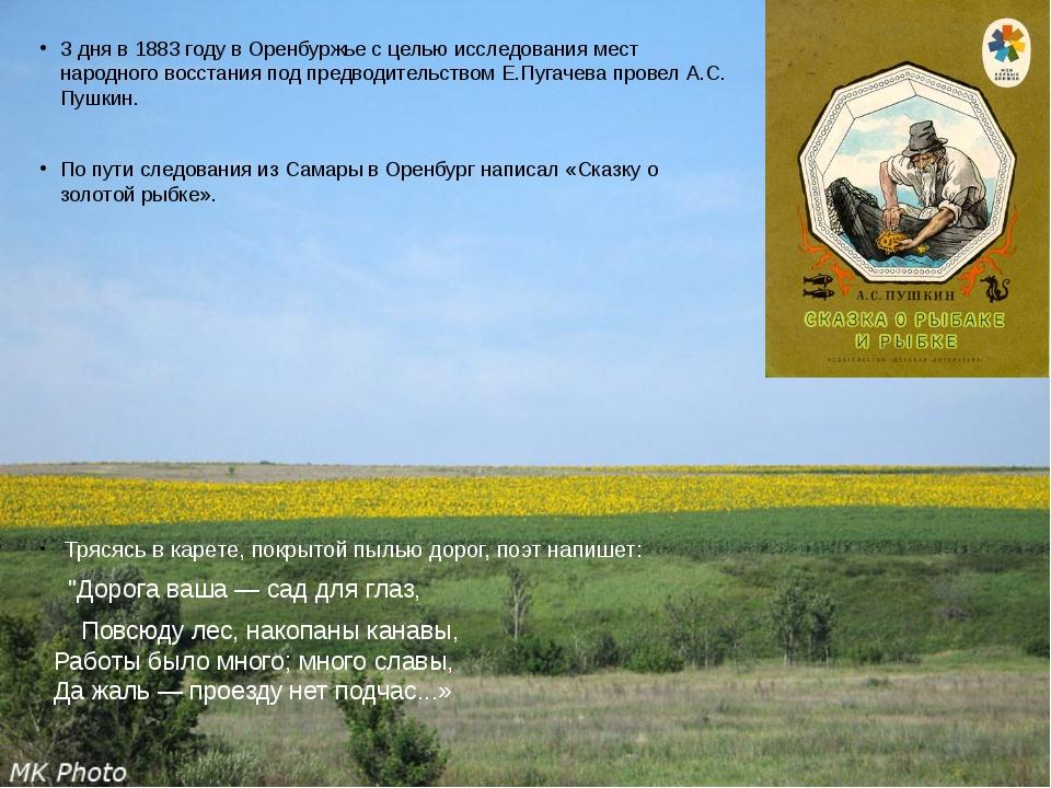 3 дня в 1883 году в Оренбуржье с целью исследования мест народного восстания...