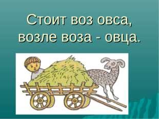 Стоит воз овса, возле воза - овца.