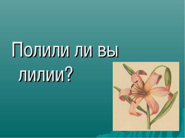 Полили ли вы лилии?