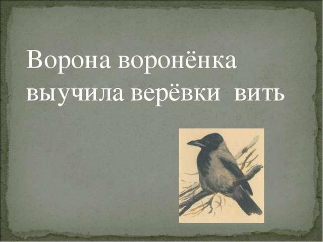 Ворона воронёнка выучила верёвки вить