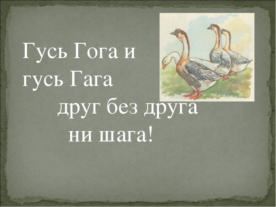 Гусь Гога и гусь Гага друг без друга ни шага!