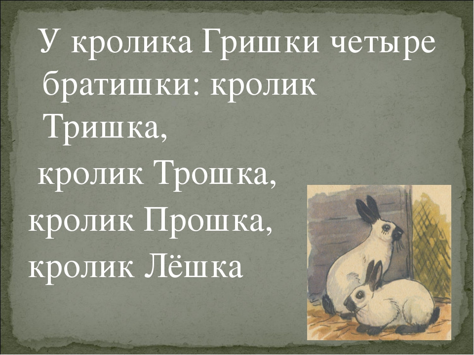 У кролика Гришки четыре братишки: кролик Тришка, кролик Трошка, кролик Прошк...