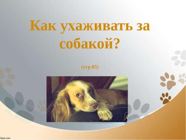 Как ухаживать за собакой? (стр.85)