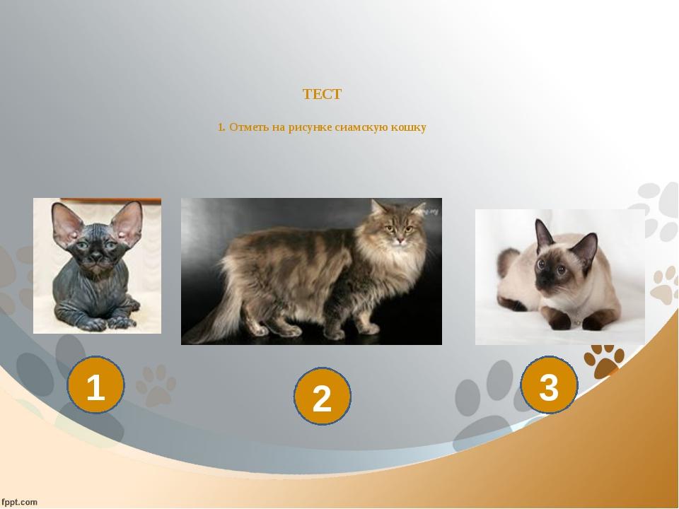 ТЕСТ 1. Отметь на рисунке сиамскую кошку 1 2 3