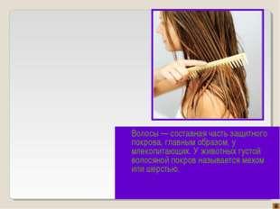 Волосы — составная часть защитного покрова, главным образом, у млекопитающих.
