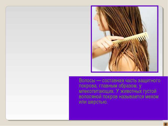 Волосы — составная часть защитного покрова, главным образом, у млекопитающих....