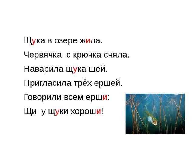 Щука в озере жила.  Червячка с крючка сняла.  Наварила щука щей.  Пригл...