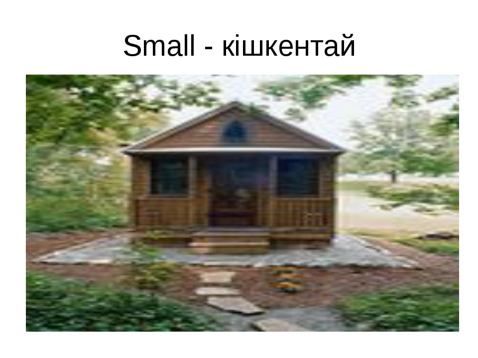 Small - кішкентай