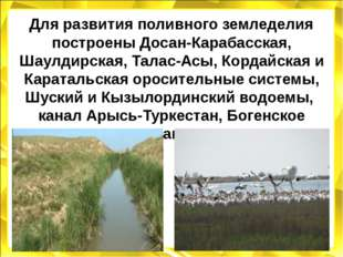 Для развития поливного земледелия построены Досан-Карабасская, Шаулдирская, Т
