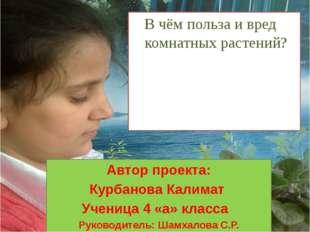 Автор проекта: Курбанова Калимат Ученица 4 «а» класса Руководитель: Шамхалова