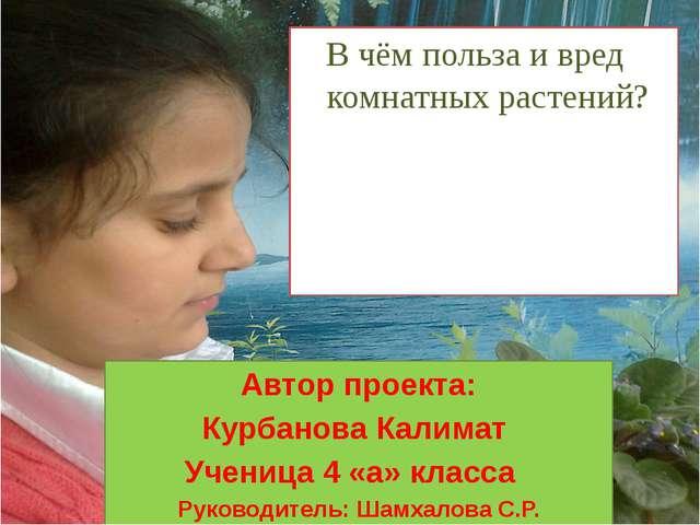 Автор проекта: Курбанова Калимат Ученица 4 «а» класса Руководитель: Шамхалова...