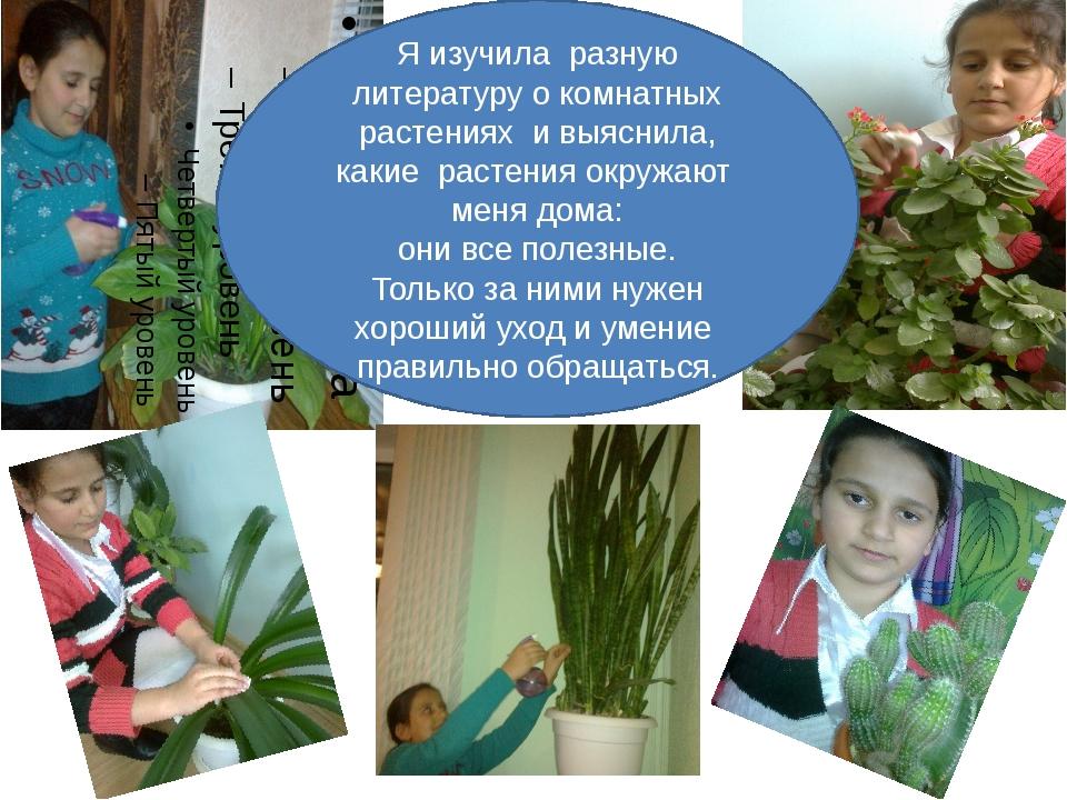 Я изучила разную литературу о комнатных растениях и выяснила, какие растения...