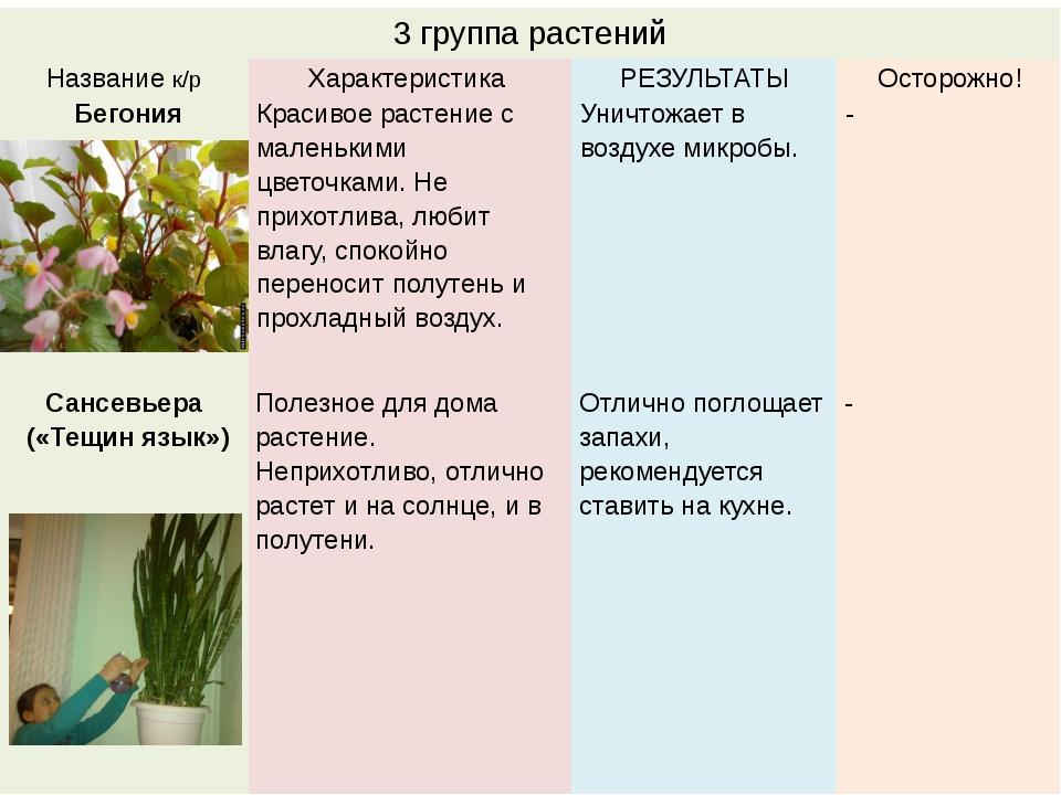 3 группа растений Названиек/р Характеристика РЕЗУЛЬТАТЫ Осторожно! Бегония Кр...