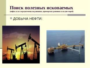 Поиск полезных ископаемых (нефть и газ сосредоточены на равнинах, приморских