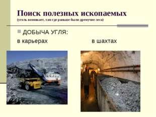 Поиск полезных ископаемых (уголь возникает, там где раньше были дремучие леса