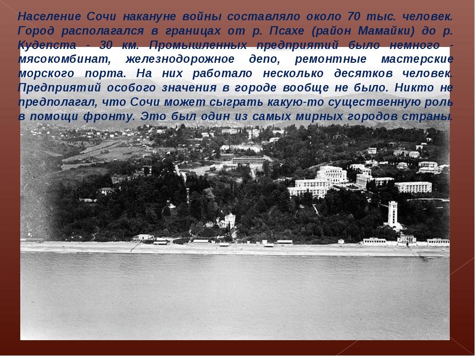 Население Сочи накануне войны составляло около 70 тыс. человек. Город распола...