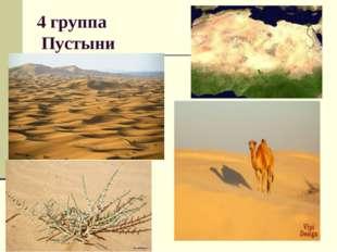 4 группа Пустыни