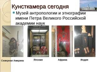 Кунсткамера сегодня Музей антропологии и этнографии имени Петра Великого Росс