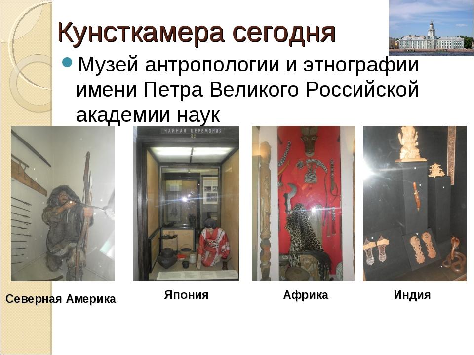Кунсткамера сегодня Музей антропологии и этнографии имени Петра Великого Росс...