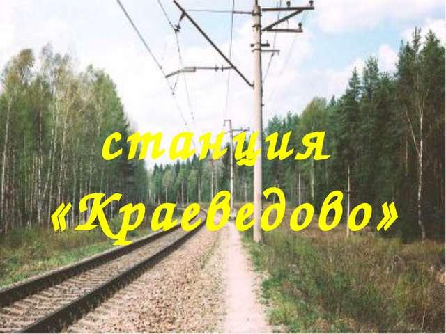 станция «Краеведово»