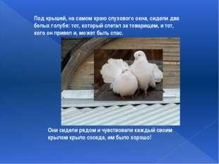 Под крышей, на самом краю слухового окна, сидели два белых голубя: тот, котор