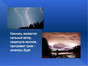 Наконец засвистел сильный ветер, сверкнула молния, прогремел гром – началась